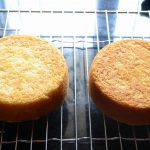 Best Eggless Vanilla Cake Perfect To Use With Fresh Cream ( Oil Based) –  Gayathri's Cook Spot