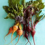 Beet Recipes - How to Cook Fresh Beets at WomansDay.com