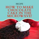 How to Make a Chocolate Cake in the Microwave With Only 4 Ingredients -  Just Smart Kitchenware