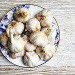 Preserving Garlic, Three Ways – Jack Monroe