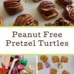 ROLO Pretzel Turtle Bites (Peanut Free!) •