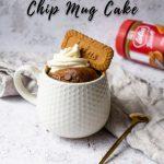 Microwave Chocolate Chip Biscoff Mug Cake Recipe   ET Food Voyage