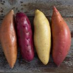Sweet Potato – Koskenades.com