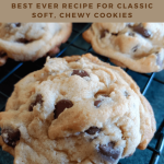 Best Ever Chocolate Chip Cookie Recipe - The Beekeepers Kitchen
