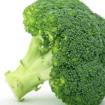 Can You Microwave Broccoli? – Step by Step Guide – Can You Microwave This?