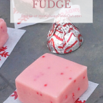 Easy Chocolate and Peppermint Fudge Recipes - Mom Always Finds Out