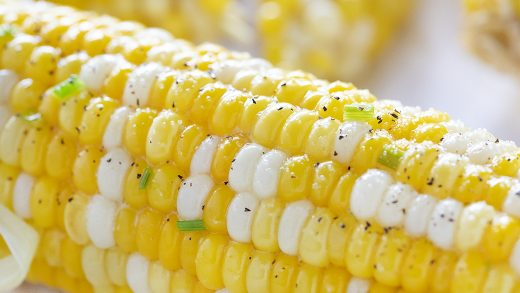 Grilled Corn on the Cob - I Am Homesteader
