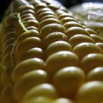 How to Cook Frozen Corn on the Cob   Expert How