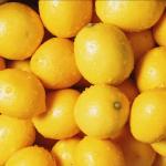 Lemon curd | Jeanette's Low Carb