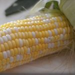 Corn on the Cob: How to Shuck & Cook in Under 5 Minutes - Hip2Save