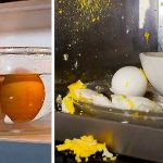 How Do I Microwave An Egg Without It Exploding? - Ceramics