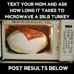 When Your Kid Plays a Prank: How to Microwave a Turkey – tales from the  side of the tub
