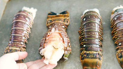 Incredible Lobster Mac and Cheese | Verissimo Bar