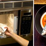 Microwave Cooking Is More Than Just Reheating Your Coffee - The New York  Times