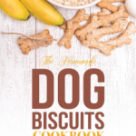 Read The Homemade Dog Biscuits Cookbook: Learn How to Make Your Own Homemade  Dog Treats Online by Martha Stephenson | Books