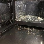"""Put an egg in the microwave trying to """"speed up the process""""... it exploded  with such force it blew the door open.: facepalm"""