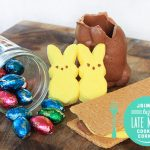 Bye Bye Bunny: Microwave Peep S'mores Recipe | Pretty Prudent