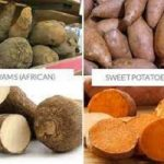 How Do You Cook Yams   How to Make African Yams - 9jafoods
