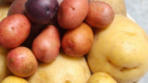 How Long to Microwave a Potato (Microwave Baked Potato) - TipBuzz
