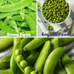 Steamed Peas in the Microwave • Steamy Kitchen Recipes Giveaways
