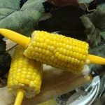 Microwave Corn on the Cob recipe 👌 with photo step by step | Cooking for  health | WOWFOOD.GURU