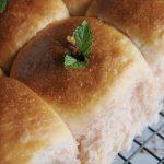 Okara (Soy Bean Pulp) Bread (Sponge Method) 豆渣山形吐司(中種法) – EC Bakes 小意思