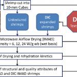 Protocol of different drying processes of shrimp; intermittent...    Download Scientific Diagram