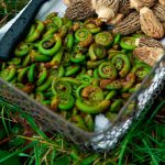 How To Cook Fiddleheads And Avoid Food Poisoning   Chatelaine
