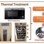 Foods | Free Full-Text | Comparison of Microwave Short Time and Oven  Heating Pretreatment on Crystallization of Raisins | HTML