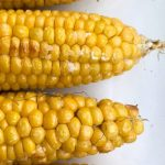 How to Microwave Corn on the Cob Without Husks – Microwave Meal Prep