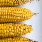 No-peel, Microwave, Corn on the Cob! AKA: the best trick ever! ⋆ Exploring  Domesticity