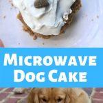 Homemade 5 Ingredient Dog Microwave Mug Cake