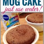 1-Minute Microwave Mug Cake No Milk No Egg   Milk Allergy Mom Recipes